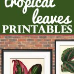 10 Free Tropical Leaves Printables   Instant Art Botanicals!   The   Free Printable Leaves