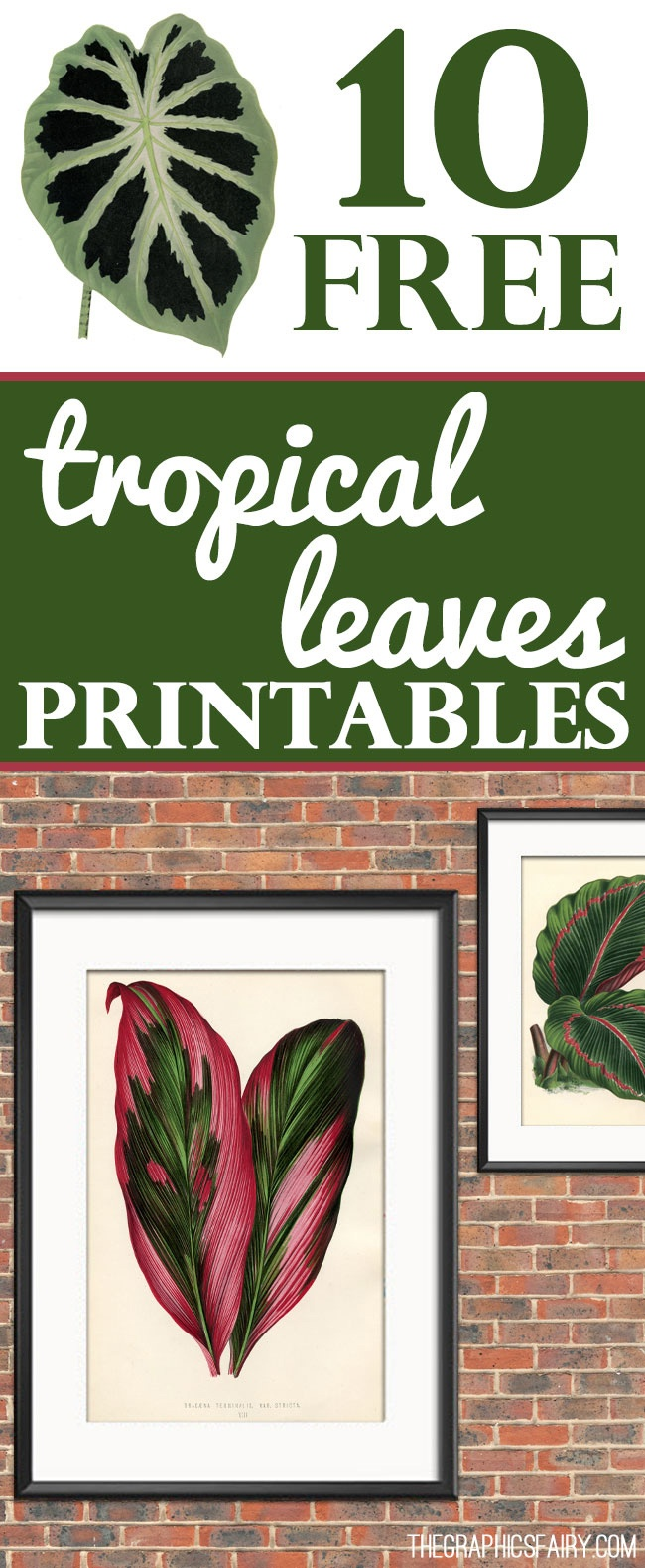 10 Free Tropical Leaves Printables - Instant Art Botanicals! - The - Free Printable Leaves