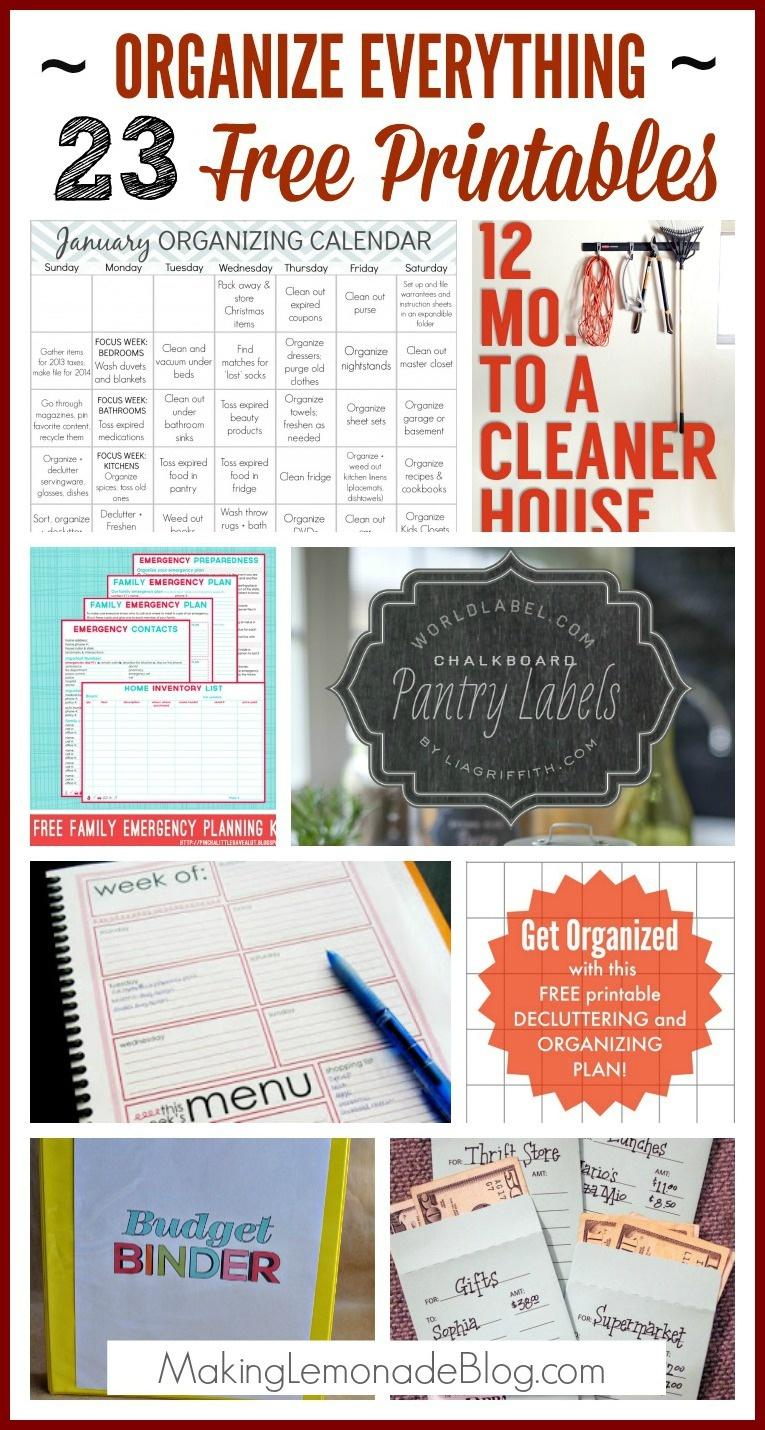 23 Free Printables To Organize Everything   Making Lemonade - Free Printable Home Organization Worksheets