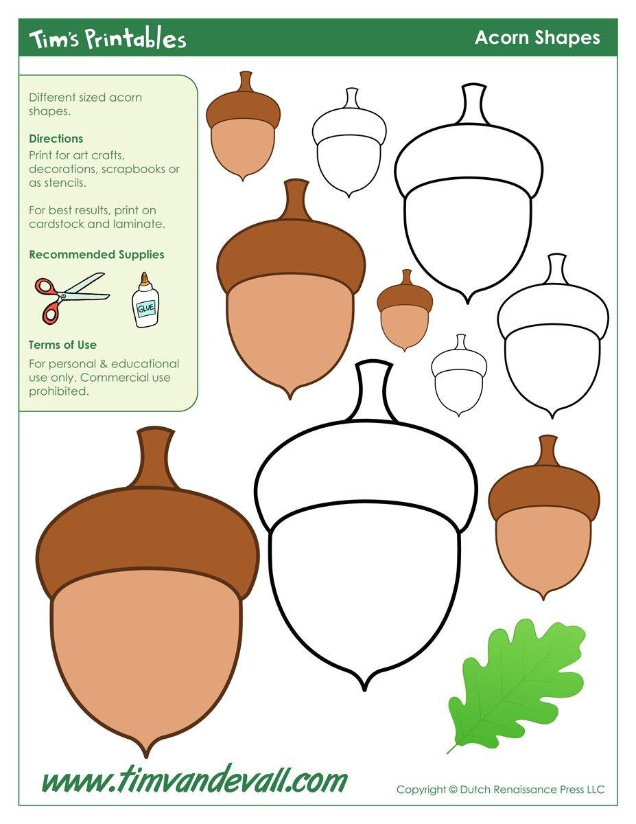 Acorn Templates / Acorn Shapes | A New Rug | Acorn Crafts, Templates - Acorn Template Free Printable