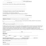 Child Custody Agreement Special Best S Of Temporary Guardianship   Free Printable Child Custody Forms