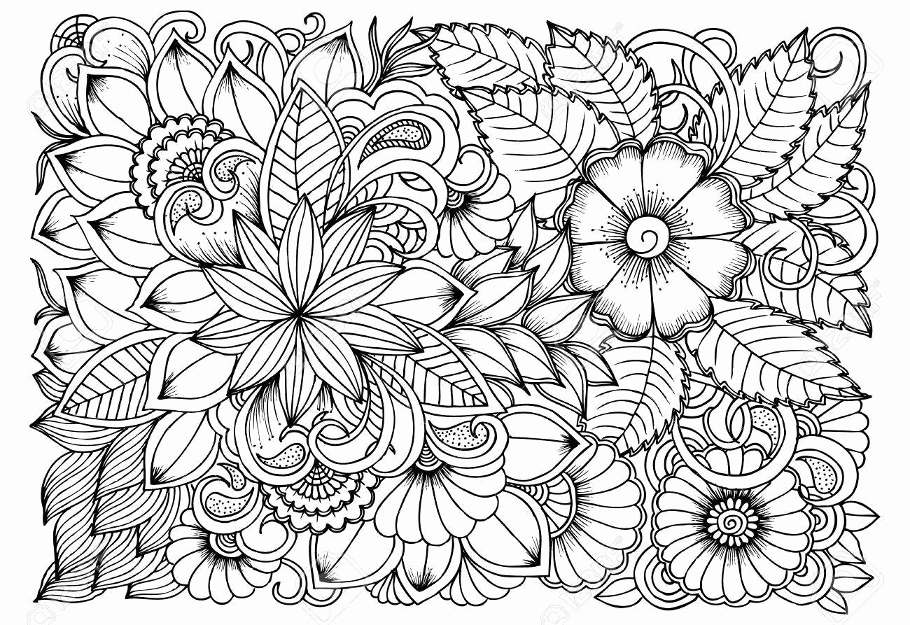 Fall Coloring Pages For Adults - Best Coloring Pages For Kids - Free Printable Coloring Sheets