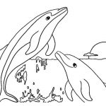 Free Printable Dolphin Coloring Pages For Kids | Coloring Pages   Dolphin Coloring Sheets Free Printable