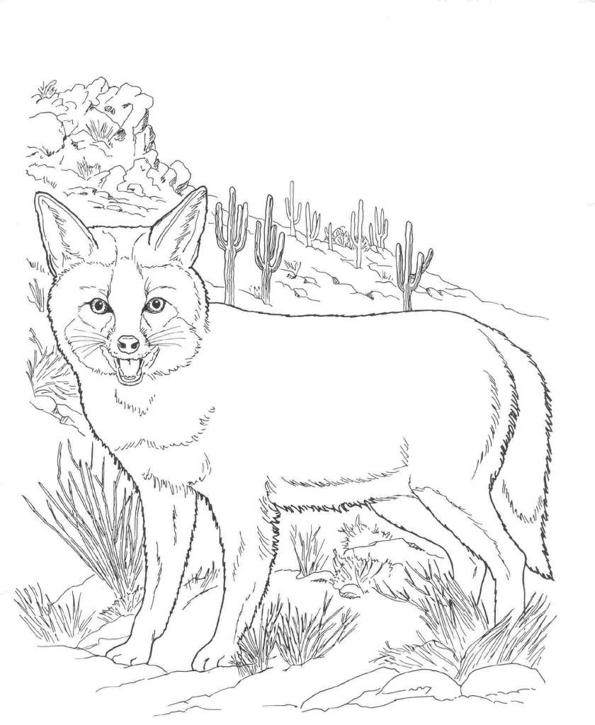 Free Printable Fox Coloring Pages For Kids | Coloring Sheets | Fox - Free Printable Desert Animals