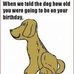 Free Printable Funny Birthday Cards For Adults   Printable Cards   Free Printable Humorous Birthday Cards