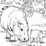Free Printable Hippo Coloring Pages For Kids | Animals | Wenn Du Mal   Free Printable Hippo Coloring Pages