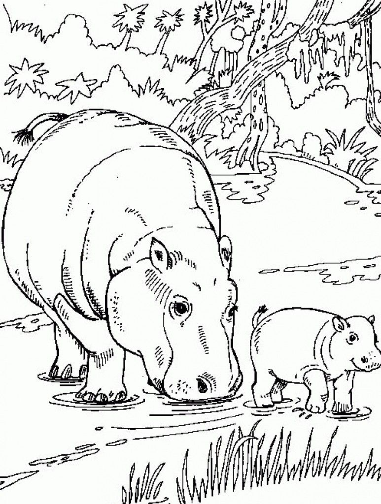 Free Printable Hippo Coloring Pages For Kids | Animals | Wenn Du Mal - Free Printable Hippo Coloring Pages