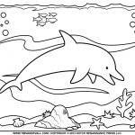 Free Printable Pictures Of Dolphins, Download Free Clip Art, Free   Dolphin Coloring Sheets Free Printable