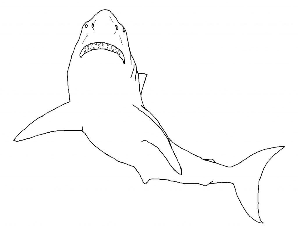 Free Printable Shark Coloring Pages For Kids | Sharks Coloring Pages - Free Printable Great White Shark Coloring Pages