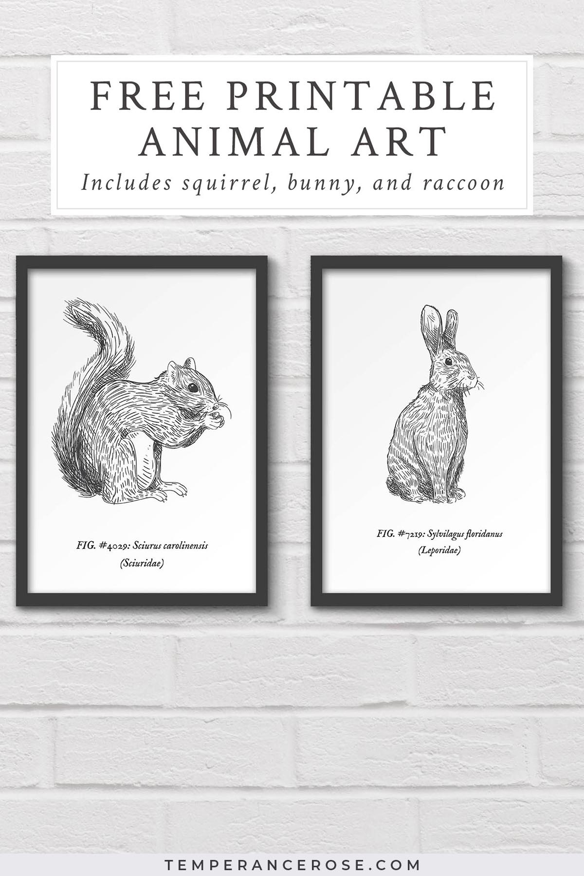 Free Printable Woodland Animal Wall Art - Free Printable Vintage Art