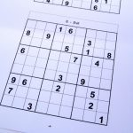 Free Sudoku Puzzles – Free Sudoku Puzzles From Easy To Evil Level   Download Printable Sudoku Puzzles Free
