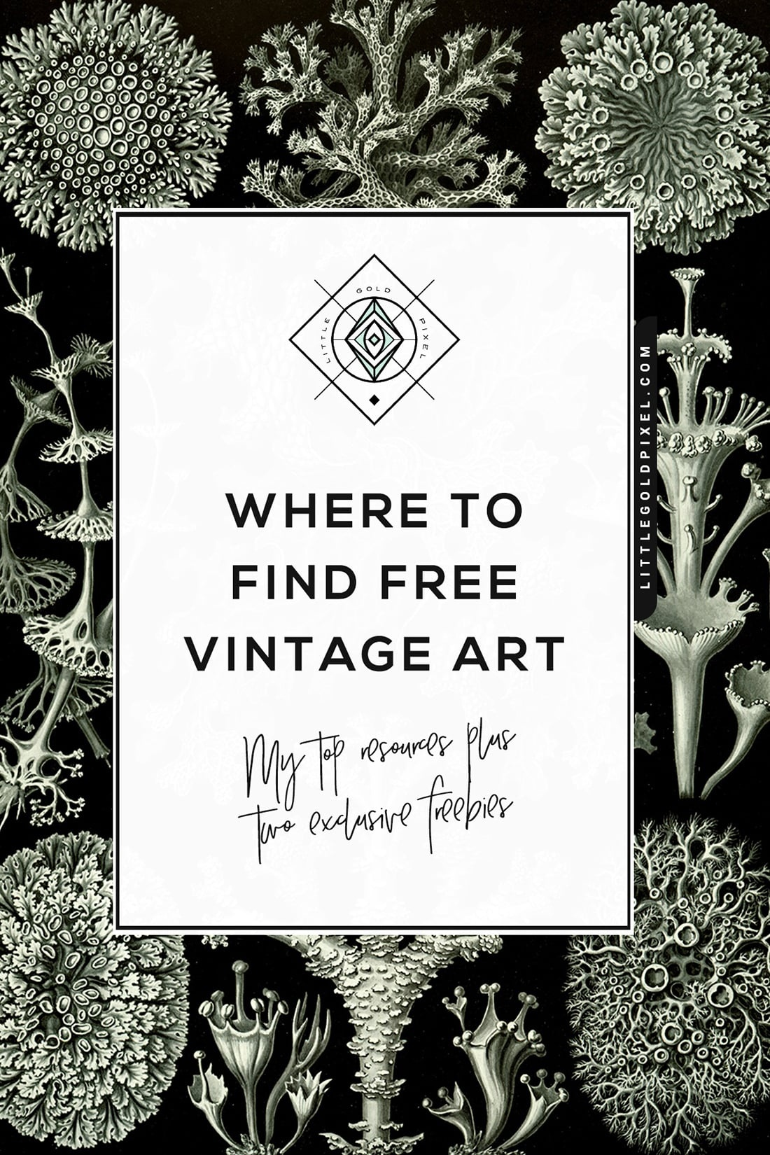 Free Vintage Art • Where To Find It + Exclusive Freebies • Little - Free Printable Vintage Art