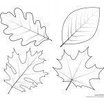 Leaf Templates & Leaf Coloring Pages For Kids   Leaf Printables   Free Printable Leaves