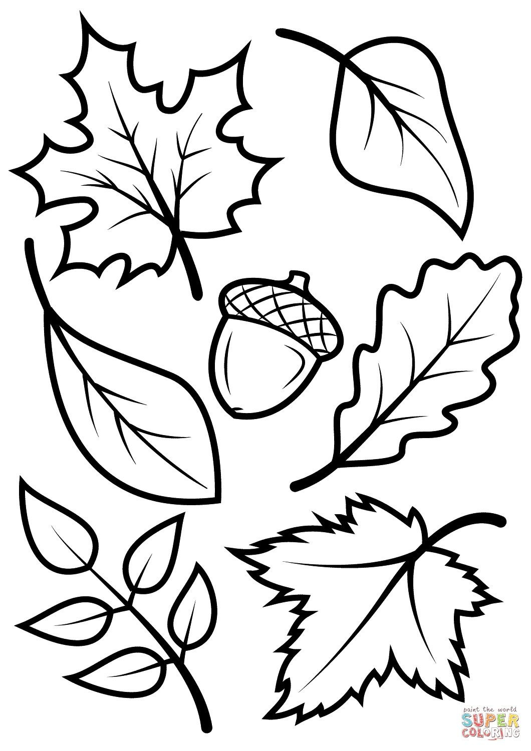 New Leaf Pictures To Color Fall Leaves And Acorn Coloring Page Free - Acorn Template Free Printable