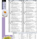 Paleo Diet 10 Day 1800 Calorie Meal Plan Free Download In 2019   Free Printable Meal Plans For Weight Loss