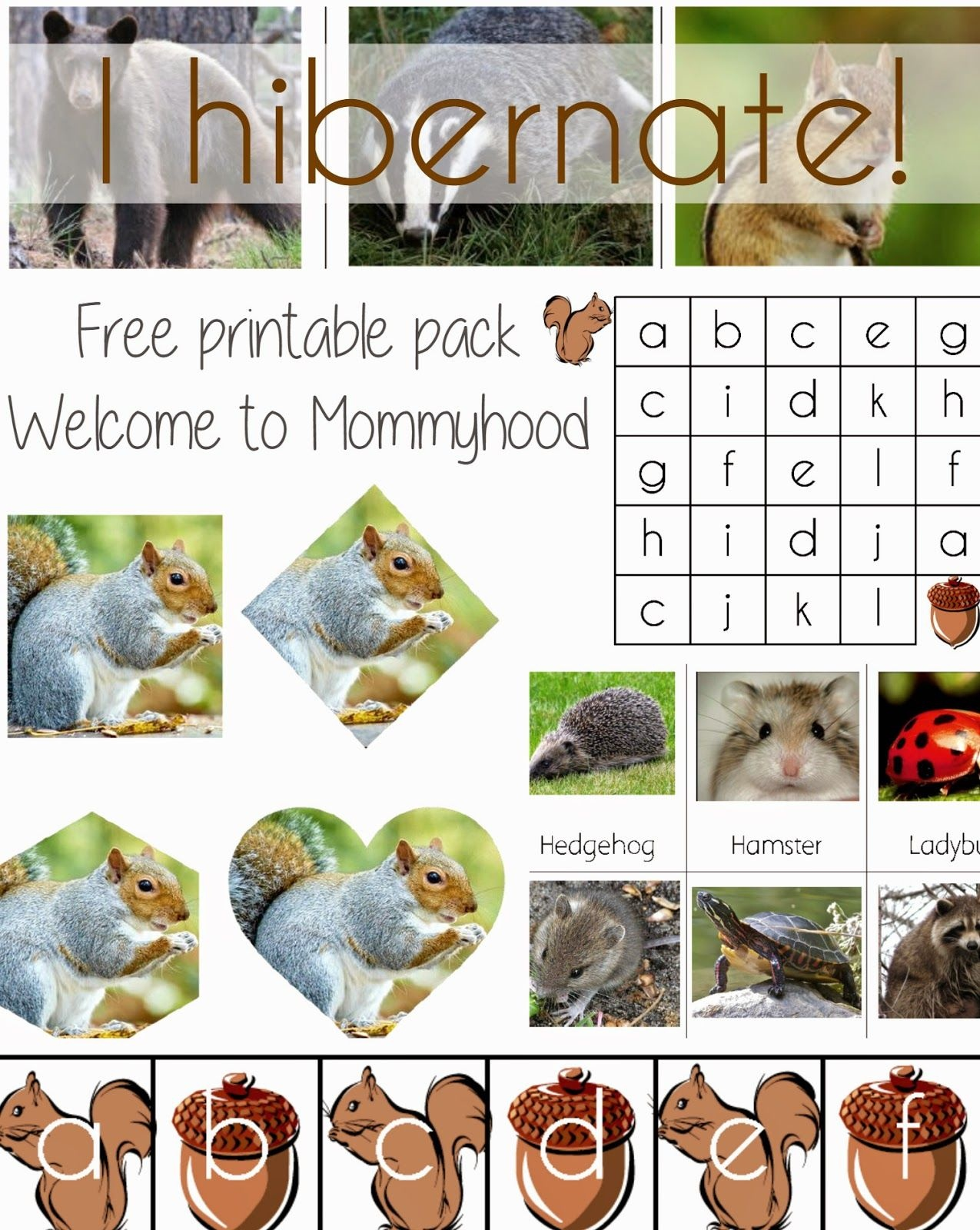 Science Activities For Preschoolers And Toddlers: Hibernation - Free Printable Hibernation Worksheets