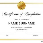 40 Fantastic Certificate Of Completion Templates [Word, Powerpoint]   Free Printable Certificates