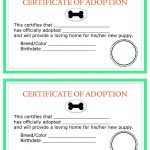 Adoption Certificate Templates. Adoption Certificate Template   Free Printable Adoption Certificate