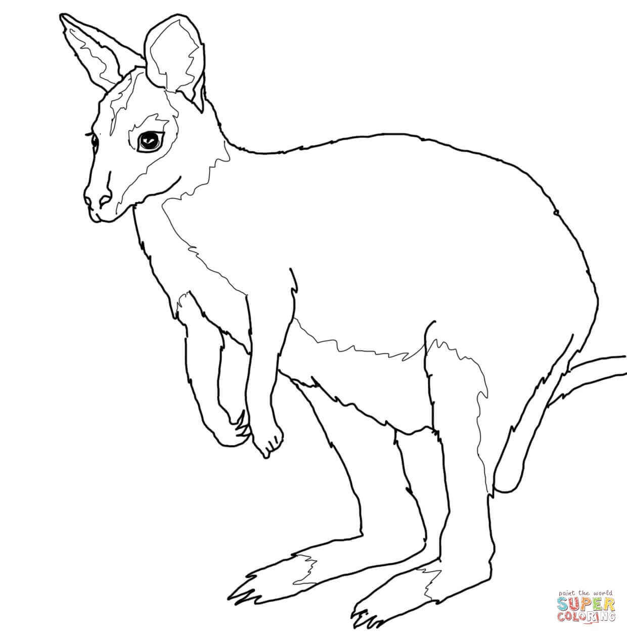 Australian Animals Coloring Pages   Free Printable Pictures - Free Printable Australian Animals