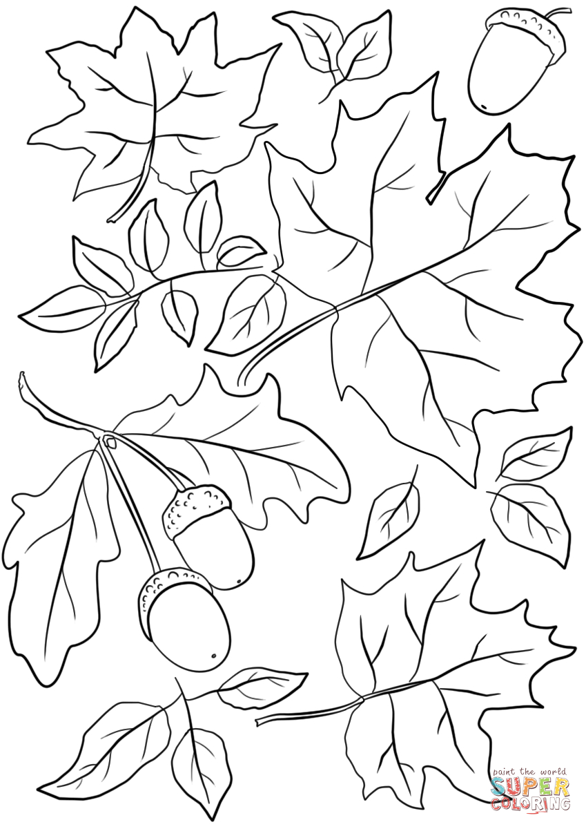 Autumn Leaves And Acorns Coloring Page | Free Printable Coloring Pages - Free Printable Pictures Of Autumn Leaves