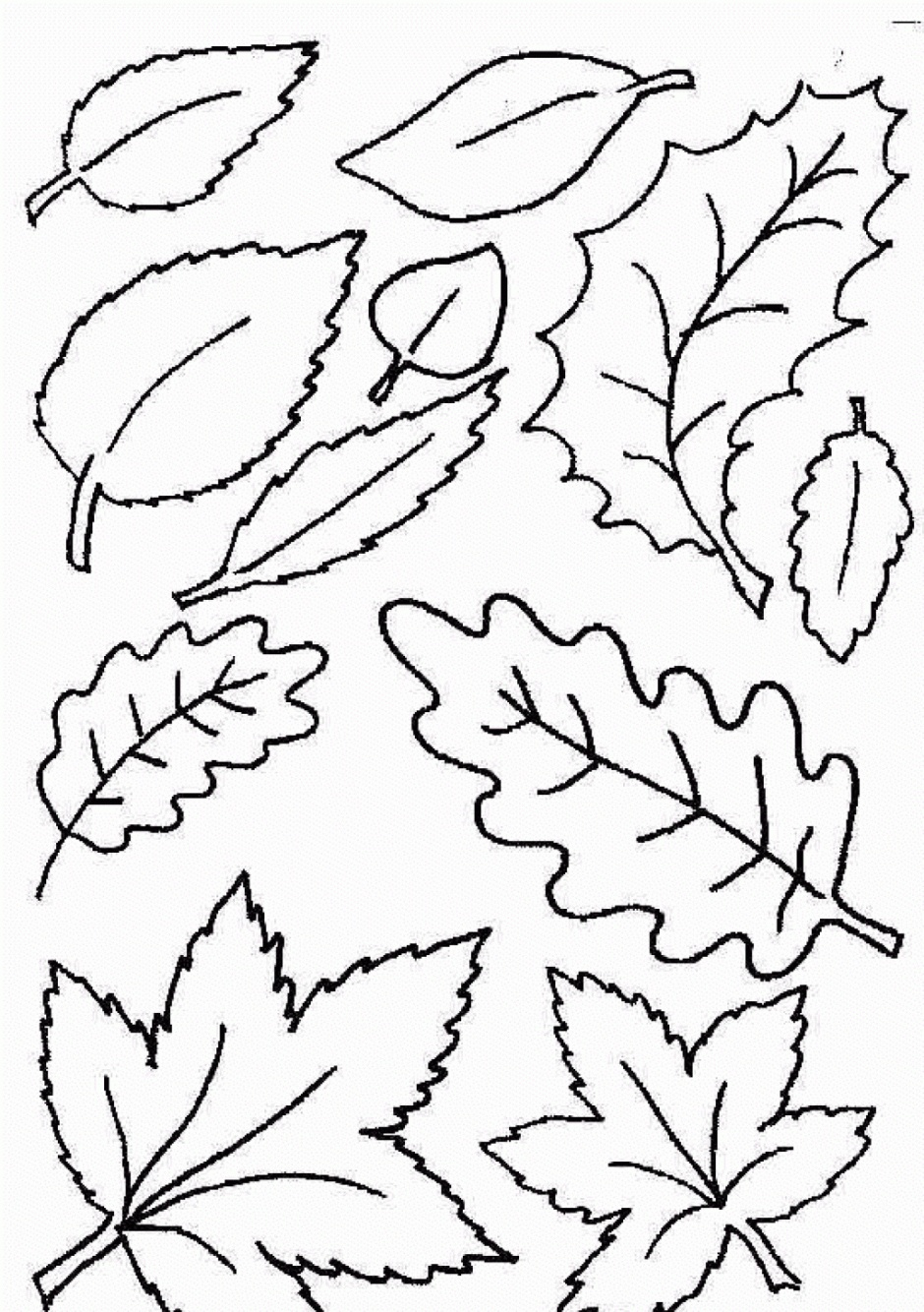 Coloring Ideas : Free Printable Leaf Coloring Pages Fall Leaves And - Free Printable Pictures Of Autumn Leaves