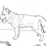 Coloring Pages Of Dogs   K 9 Police Dog Coloring Page Free Printable   Free Printable Dog Coloring Pages
