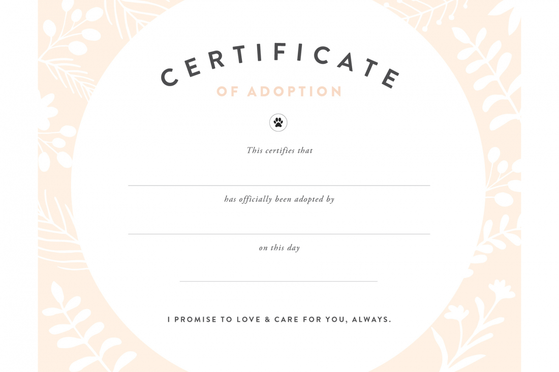 Diy Rescue Dog Adoption Certificate | Kids' Party Ideas | Rescue - Free Printable Stuffed Animal Adoption Certificate