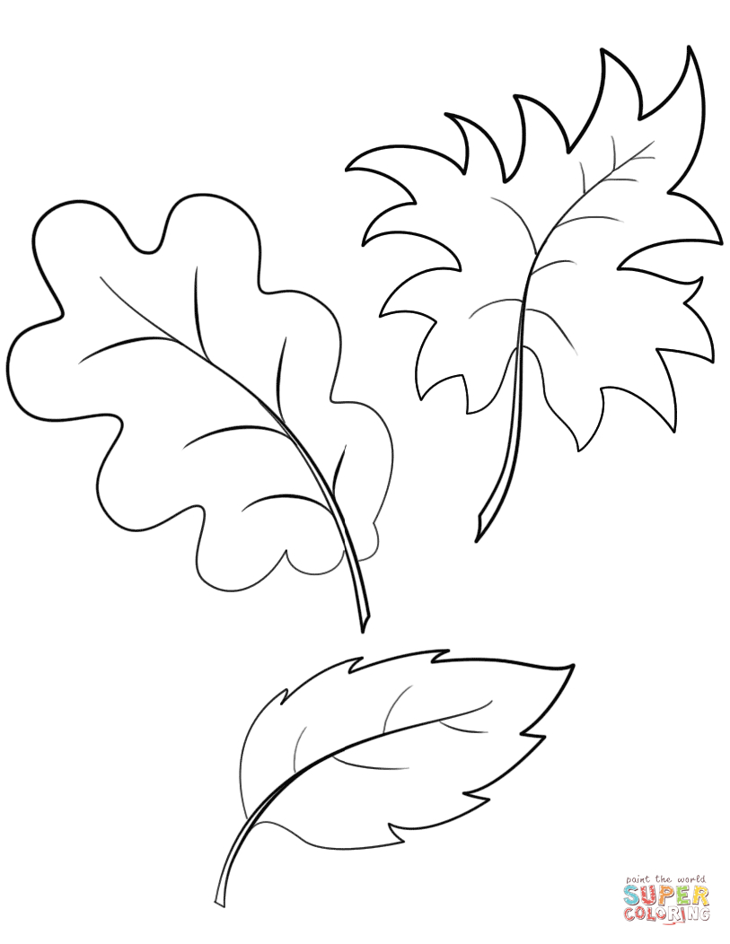 Fall Autumn Leaves Coloring Page   Free Printable Coloring Pages - Free Printable Fall Leaves Coloring Pages