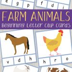 Farm Animals Beginning Letter Clip Cards   Itsy Bitsy Fun   Free Printable Animal Classification Cards