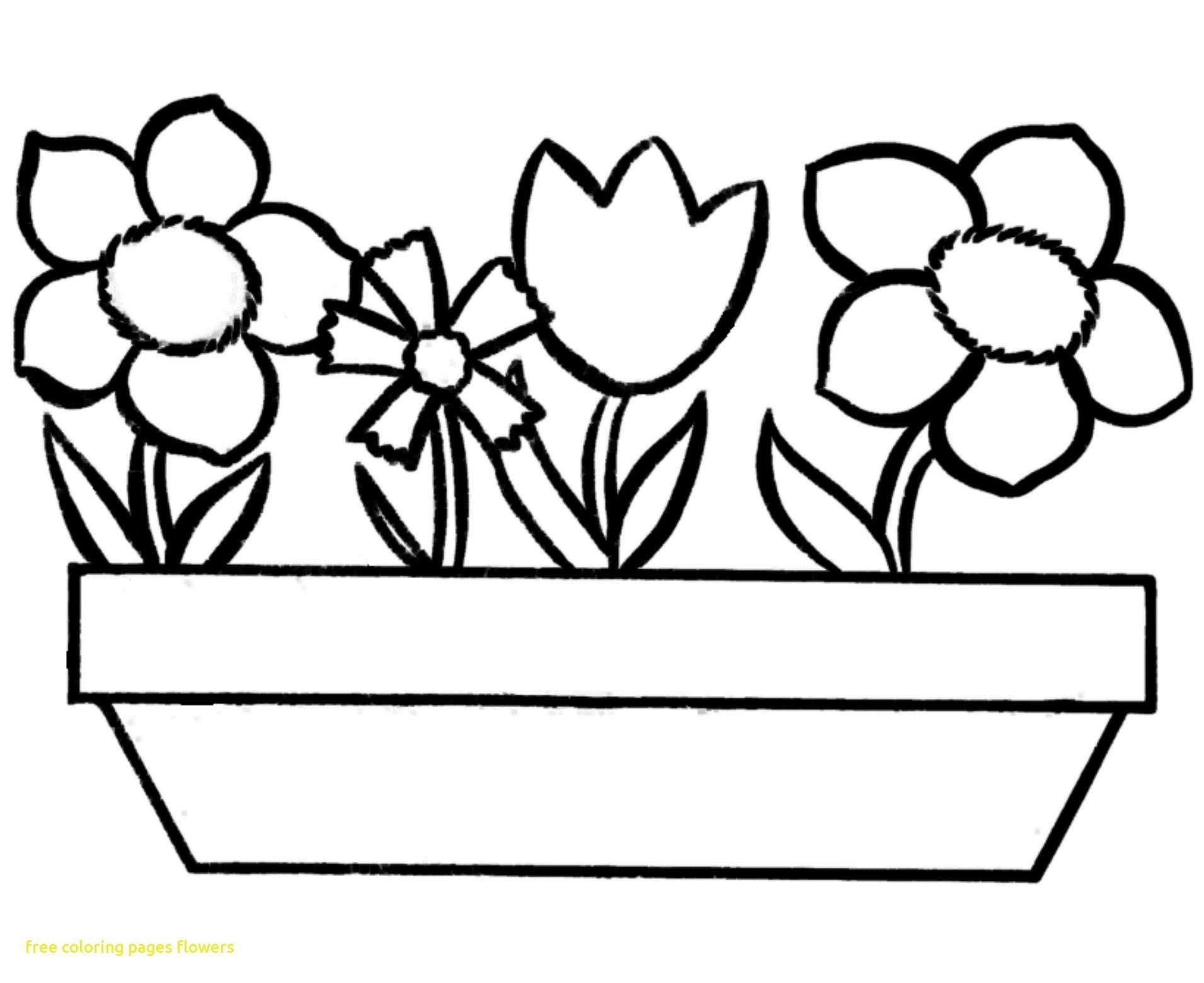 Flower Coloring Pages Printable Flower Coloring Pages Medquit Free - Free Printable Flower Coloring Pages