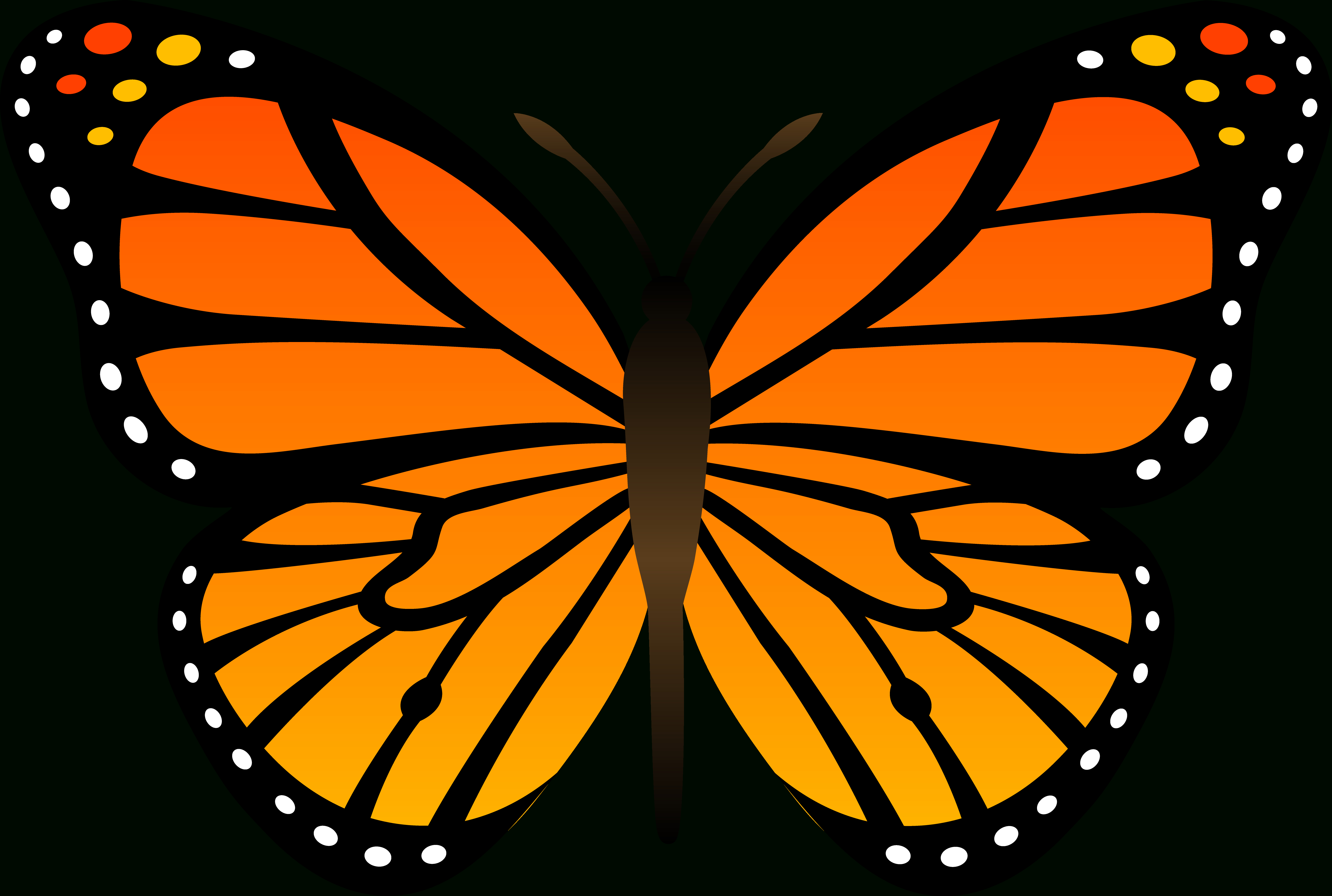 Free Butterfly Images Free, Download Free Clip Art, Free Clip Art On - Free Printable Butterfly Clipart
