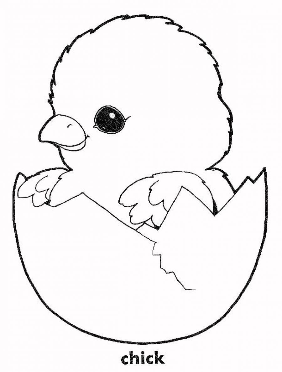 Free Coloring Pages For Chickens, Download Free Clip Art, Free Clip - Free Printable Easter Baby Chick Coloring Pages