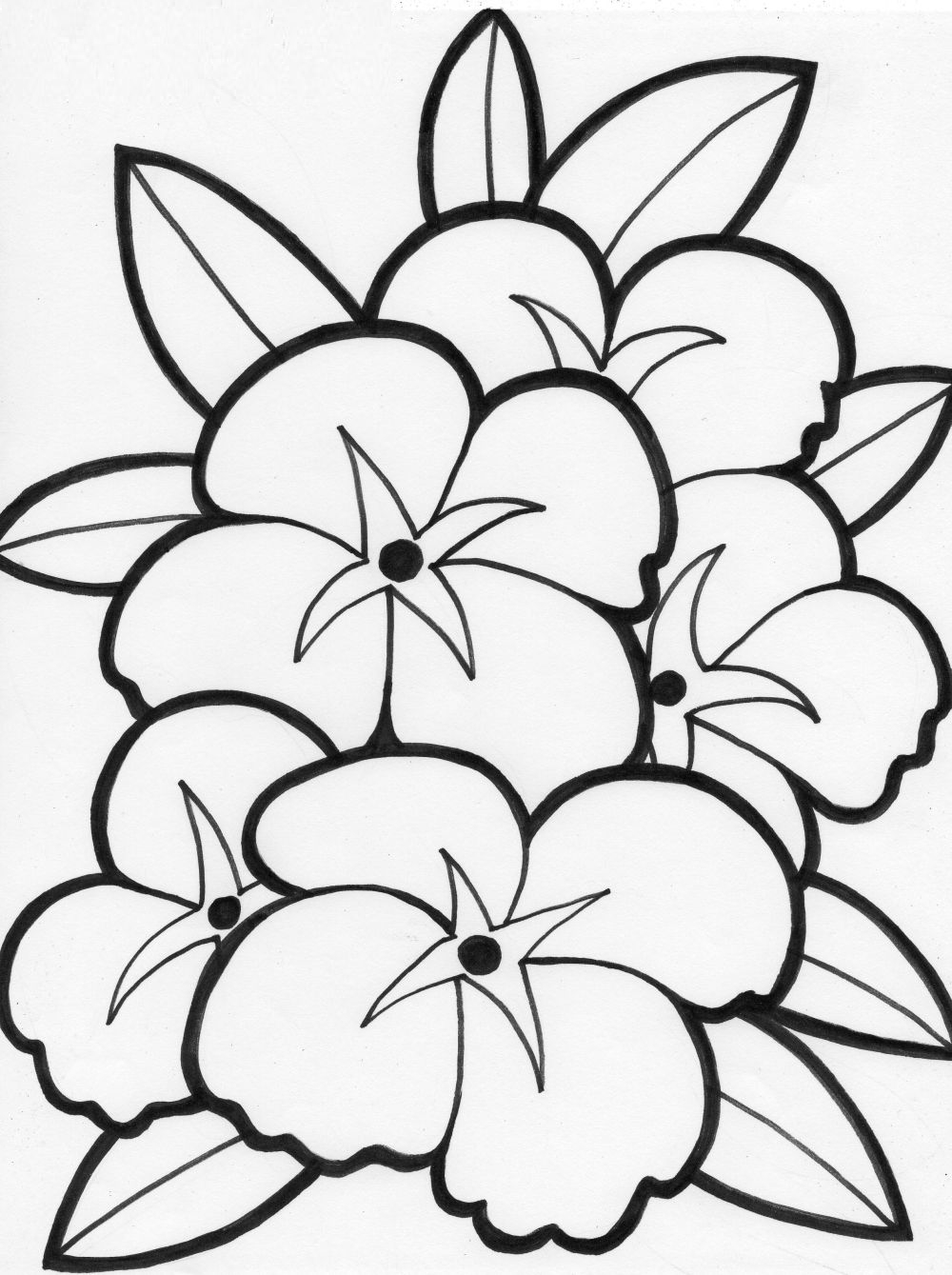 Free Coloring Pages   Free Flower Coloring Pages   Coloring Pages - Free Printable Flower Coloring Pages