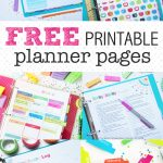 Free Coupons Without Having To Download Anything / Freebies Calendar Psd   Free Printable Coupons Without Downloads