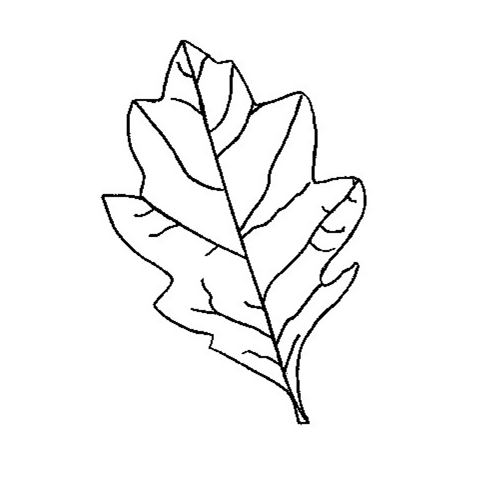 Free Oak Leaf Outline, Download Free Clip Art, Free Clip Art On - Free Printable Oak Leaf Patterns