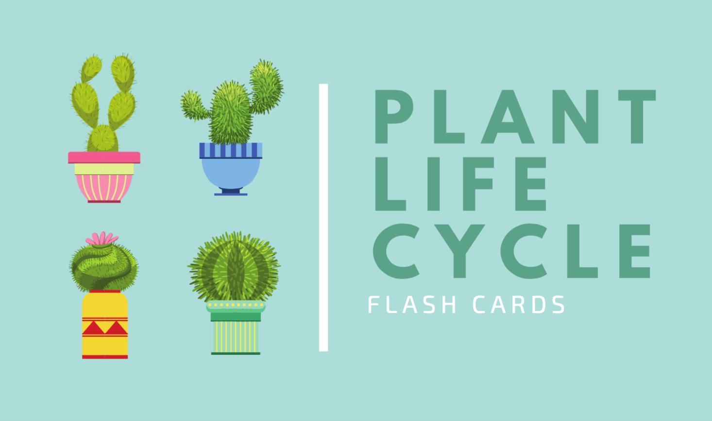 Free Online Flashcard Maker: Design Custom Flashcards - Canva - Free Printable Flash Card Maker Online