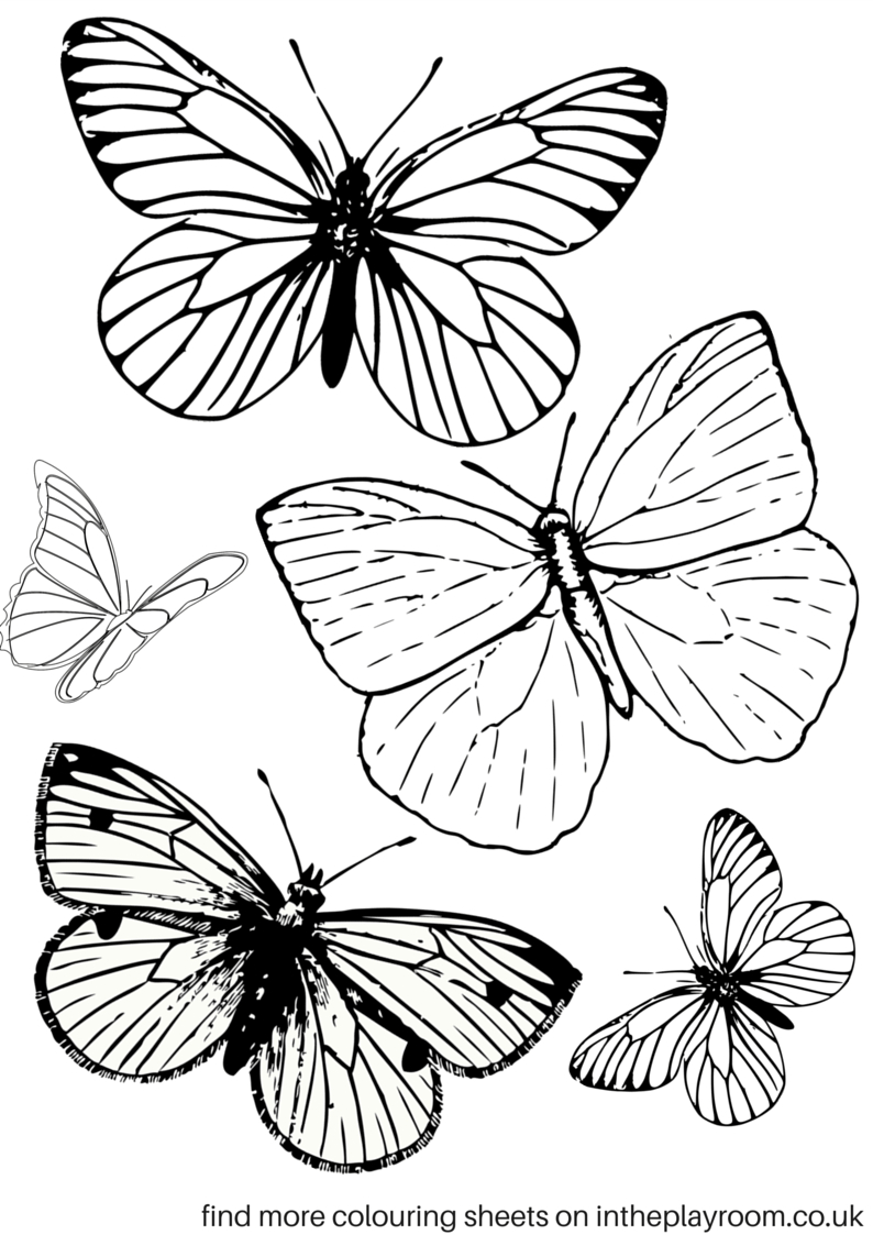 Free Printable Butterfly Colouring Pages | Bible Class | Butterfly - Free Printable Butterfly