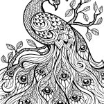 Free Printable Coloring Pages For Adults Only Image 36 Art   Free Printable Coloring Pages