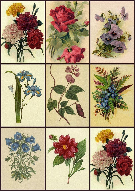 Free Printable Decoupage Papers | Digital Collage Sheet - Flower - Free Printable Decoupage Flowers