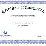 Free Printable Editable Certificates Birthday Celebration Brochure   Free Printable Certificates Of Accomplishment