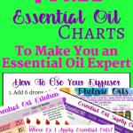 Free Printable Essential Oil Charts. Essential Oil Dilution Charts   Free Printable Aromatherapy Charts