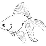 Free Printable Fish Coloring Pages For Kids   Free Printable Fish Coloring Pages