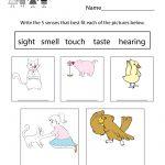 Free Printable Five Senses Worksheet For Kids   Free Printable Worksheets For Kids Science