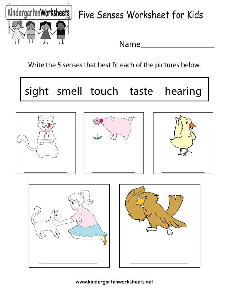 Free Printable Five Senses Worksheet For Kids - Free Printable Worksheets For Kids Science