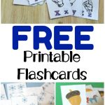 Free Printable Flashcards   Look! We're Learning!   Free Printable Flashcards For Toddlers