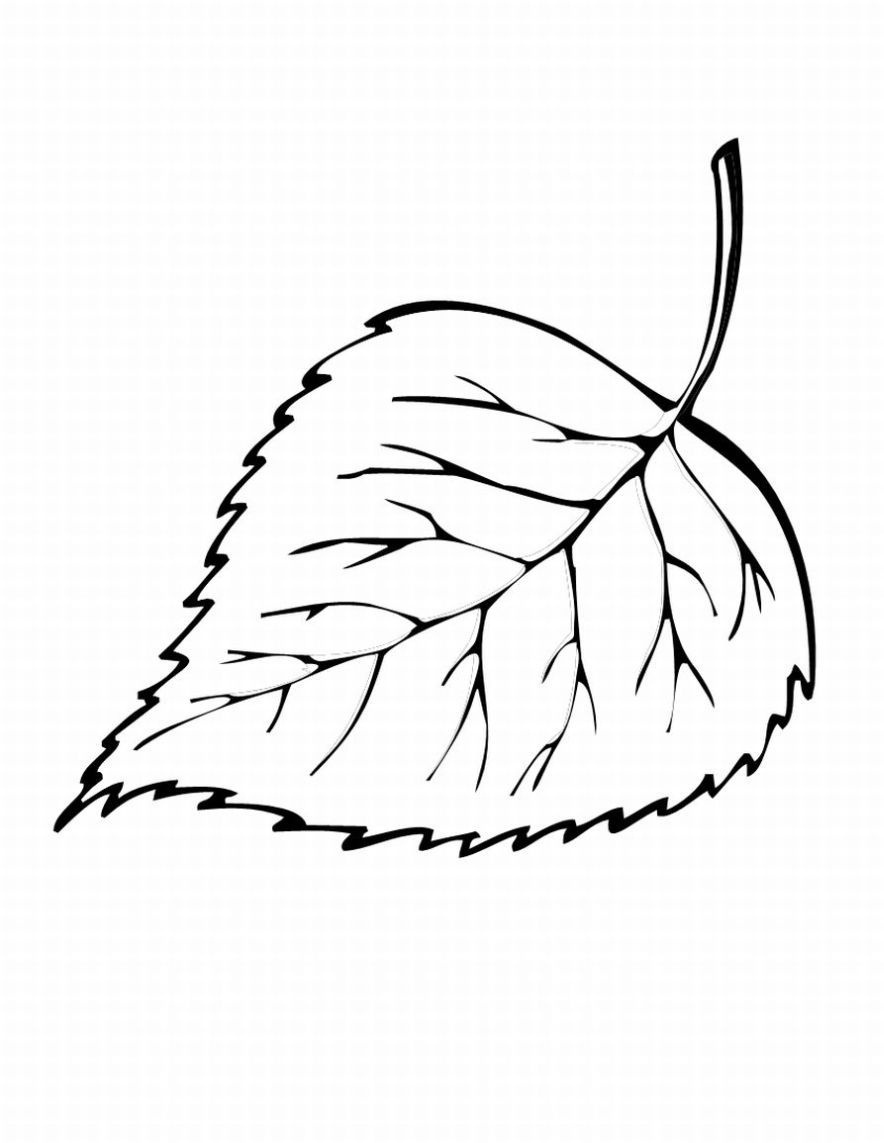 Free Printable Leaf Coloring Pages For Kids | ~*~ Coloring Pages - Free Printable Leaf Coloring Pages
