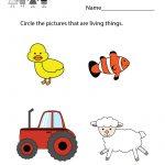 Free Printable Life Science Student Worksheet For Kindergarten   Free Printable Worksheets For Kids Science