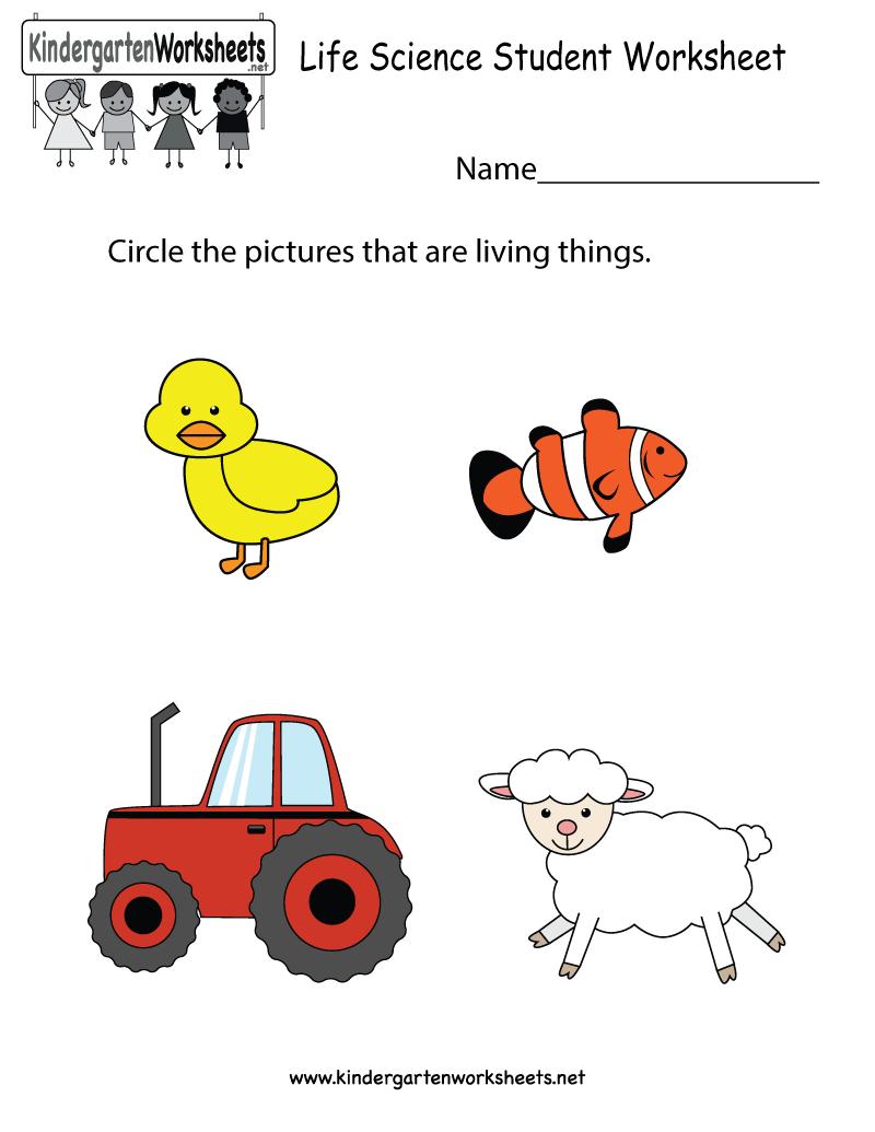 Free Printable Worksheets For Kids Science | Free Printable