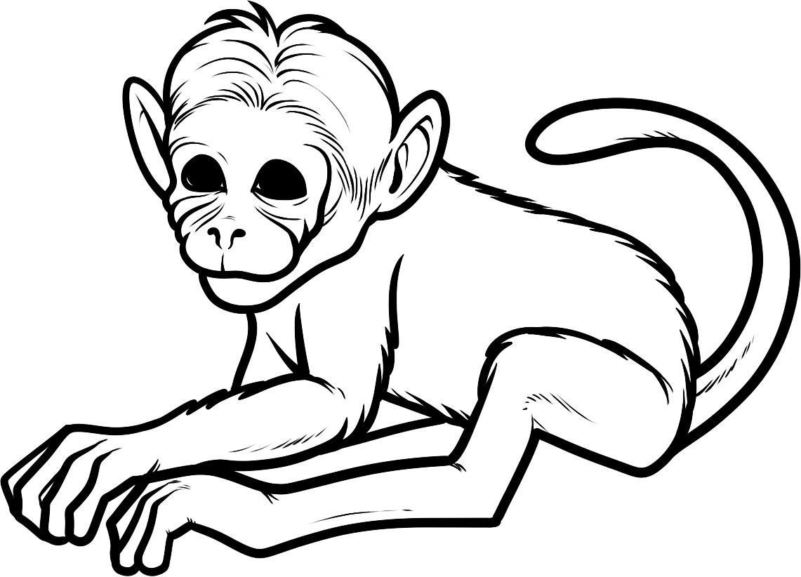 Free Printable Monkey Coloring Pages For Kids   Girl Scouts   Monkey - Free Printable Monkey Coloring Pages