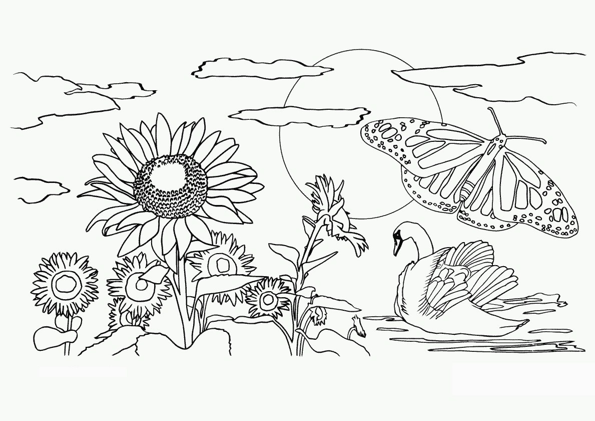 Free Printable Nature Coloring Pages For Kids Best For Coloring Page - Free Printable Nature Coloring Pages For Adults
